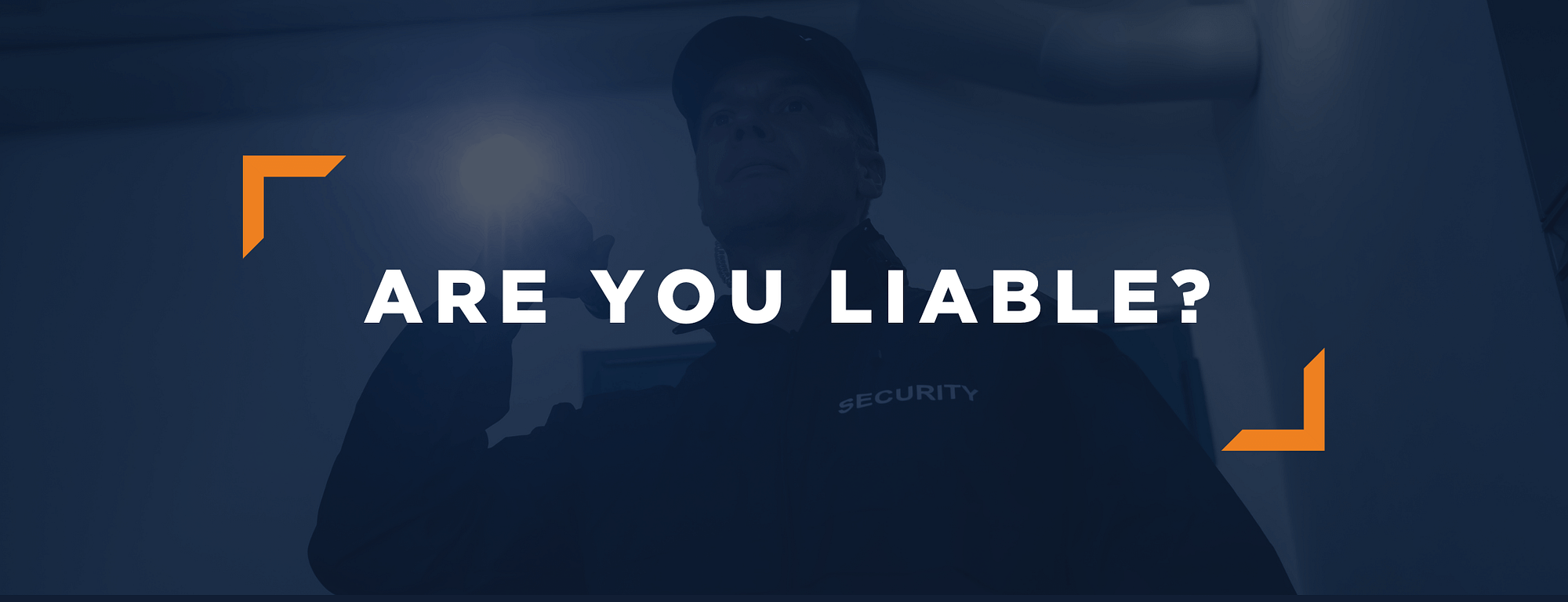 BPS Security - Are You Liable